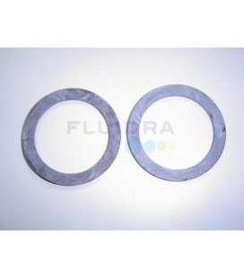 Junta plana 55X72X3.5 enl. filtro cant D.750 Astralpool. 4404180408
